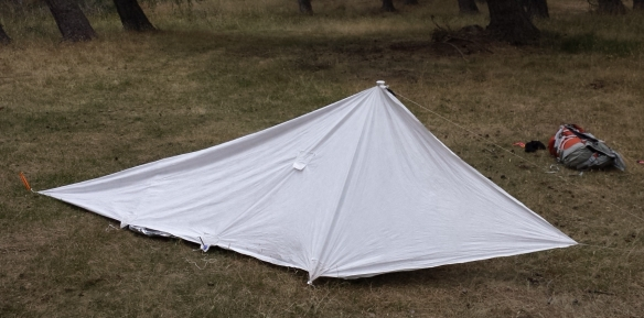 Home-made Tyvek tent