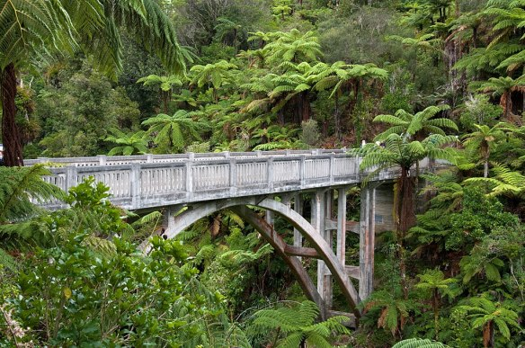 Bridge to Nowhere, Whanganui National Park, Evan Goldberg photo, Creative Commons